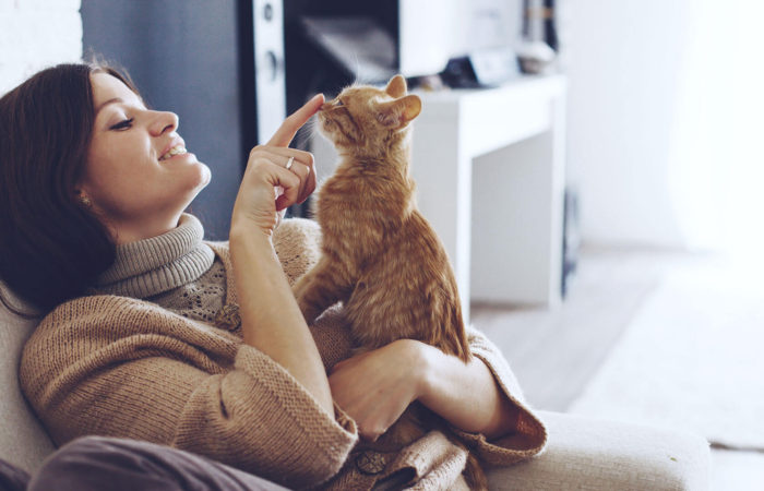 Keeping Your Pets Safe From Illness